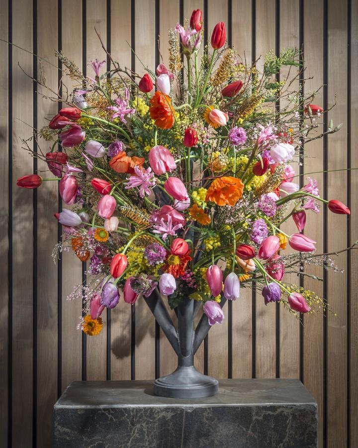 Opmaak met tulpen