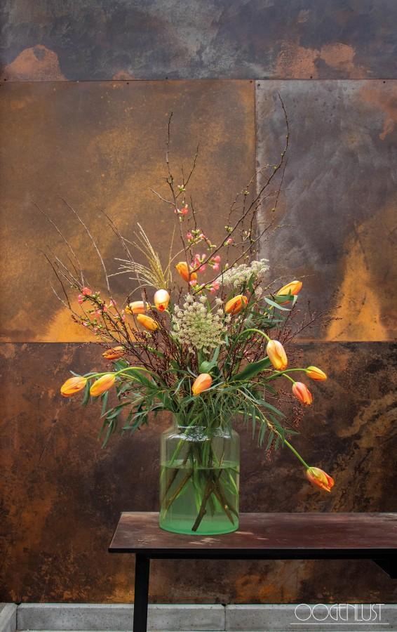 75 tulpen