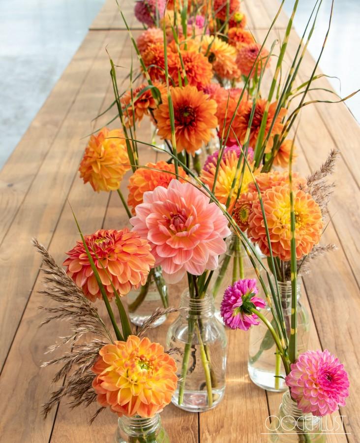 Oranje tafel