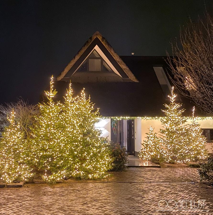 Huis buiten met kerstbomen